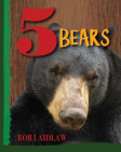5 Bears Cover Image