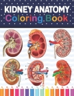 Kidney Anatomy Coloring Book: Kidney Anatomy Coloring Book for kids. Human Kidney Anatomy Coloring Pages for Kids Toddlers Teens. Human Body Anatomy Cover Image