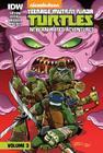 Teenage Mutant Ninja Turtles: New Animated Adventures: Volume 3 Cover Image