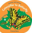 Caterpillar to Butterfly: Fold Out and Find Out Cover Image