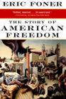 The Story of American Freedom Cover Image