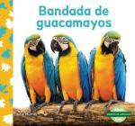 Bandada de Guacamayos (Macaw Flock) Cover Image