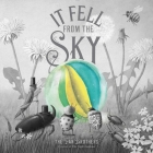 It Fell from the Sky Cover Image