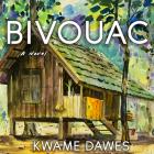 Bivouac Cover Image