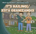 It's Hailing!/Est Granizando! (What's the Weather?/Que Tiempo Hace?) Cover Image