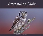 Intriguing Owls: Exceptional Images and Insight (Wildlife Appreciation) Cover Image