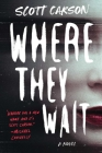 Where They Wait: A Novel Cover Image