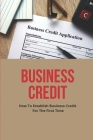 Business Credit: How To Establish Business Credit For The First Time: Credit Secrets Cover Image