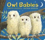 Owl Babies: Padded Board Book Cover Image