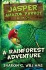 A Rainforest Adventure: Large Print Edition Cover Image