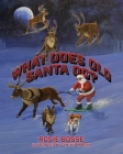 What Does Old Santa Do? Cover Image