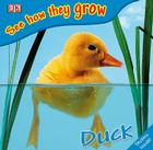 See How They Grow: Duck [With Stickers] Cover Image