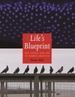 Life's Blueprint: The Science and Art of Embryo Creation Cover Image