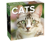 Cats 2022 Day-to-Day Calendar Cover Image