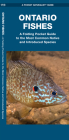 Ontario Fishes: A Folding Pocket Guide to the Most Common Native and Introduced Species (Pocket Naturalist Guide) Cover Image