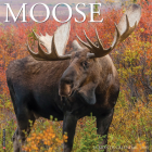 Moose 2021 Wall Calendar Cover Image