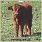 Baby Highland Cow 2021 Wall Calendar: Official Highland Cow Wall Calendar 2021 Cover Image