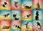 Cow Yoga 1000-Piece Puzzle Cover Image