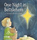 One Night In Bethlehem Cover Image