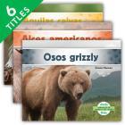Animales de América del Norte (Animals of North America) (Spanish Version) (Set) Cover Image