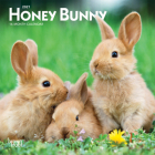 Honey Bunny 2021 Mini 7x7 Cover Image