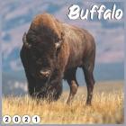 Buffalo: 2021 Wall & Office Calendar Cover Image