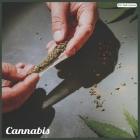 Cannabis 2021 Wall Calendar: Official Cannabis Calendar 2021 Cover Image