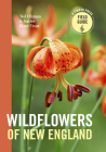 Wildflowers of New England (Timber Press Field Guides) Cover Image