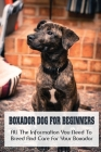 Boxador Dog For Beginners: All The Information You Need To Breed And Care For Your Boxador: Pros And Cons Of Keeping Boxador Dog Cover Image