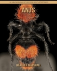 Ants: An Amazing Animal Picture Book about Ants for Kids Cover Image