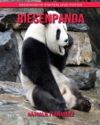 Riesenpanda: Sagenhafte Fakten und Fotos Cover Image