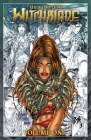 The Complete Witchblade Volume 1 Cover Image