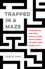 Trapped in a Maze: How Social Control Institutions Drive Family Poverty and Inequality Cover Image
