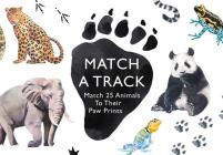 Match a Track: Match 25 Animals to Their Paw Prints (Magma for Laurence King) Cover Image