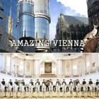 Amazing Vienna Cover Image