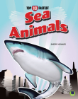 Sea Animals Cover Image