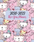 2020-2022 Three Year Planner: Cute Pink Cats, 36 Months Calendar Agenda Schedule Organizer January 2020 to December 20222 With Holidays and inspirat Cover Image