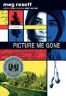 Picture Me Gone Cover Image