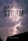 Our Perfect Storm Cover Image