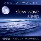 Slow Wave Sleep Cover Image