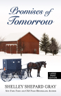 Promises of Tomorrow Cover Image