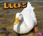 Ducks (Farm Animals) Cover Image