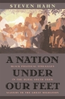 A Nation Under Our Feet: Black Political Struggles in the Rural South from Slavery to the Great Migration Cover Image
