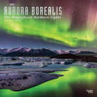 Aurora Borealis the Magnificent Northern Lights 2021 Square Foil Cover Image