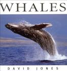 Whales (Wildlife) Cover Image
