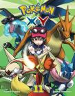 Pokémon X•Y, Vol. 11 Cover Image
