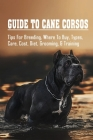 Guide To Cane Corsos: Tips For Breeding, Where To Buy, Types, Care, Cost, Diet, Grooming, & Training: Tips In Training Your Cane Corso Cover Image