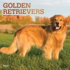 Golden Retrievers 2019 Square Foil Cover Image