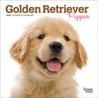 Golden Retriever Puppies 2021 Mini 7x7 Cover Image