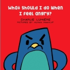 What should I do when I feel angry? Cover Image